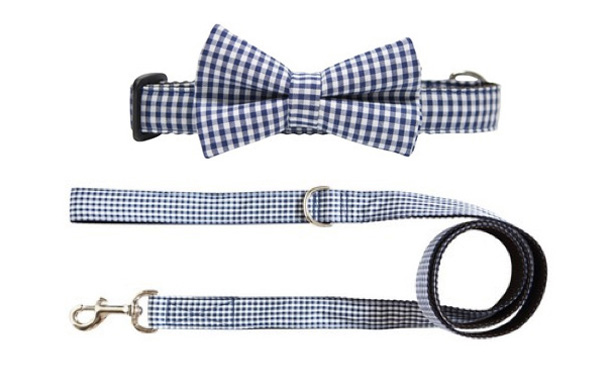 John-Lewis-Purple-Bone-Collar-and-Lead.jpg