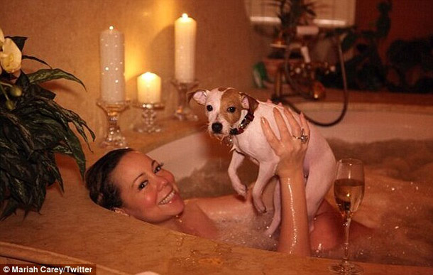 Mariah-and-a-JRT.jpg