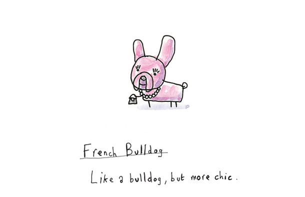 Breeds_French_Bulldog_2.jpg