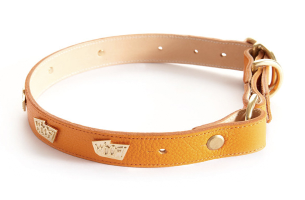 WOOF-Collar-Orange.jpg