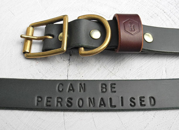 Houndworthy_Personalised_Dog_Collar.jpg