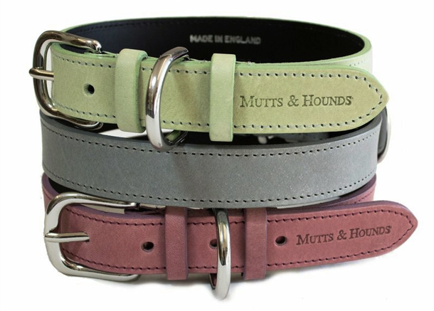 Mutts--Hounds-Pastel-Collar.jpg