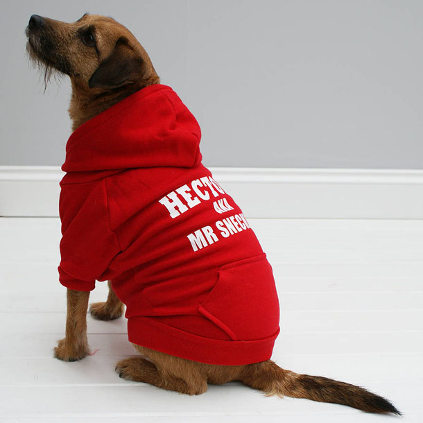 original_personalised-my-special-name-dog-hoodie.jpg